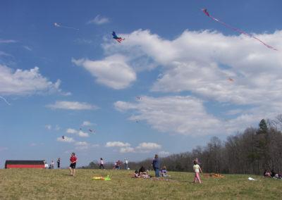 Fence 07 kite day_28