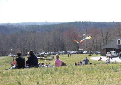 Fence 07 kite day_4