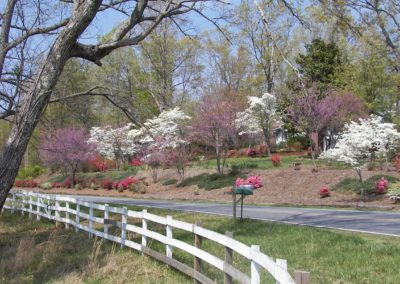 Polk Co spring scene