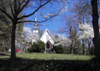Spring Saluda