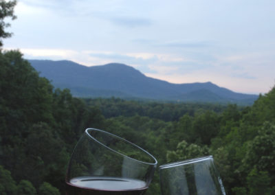 wine glasses with mountain
