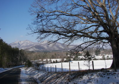 winter 2009_5